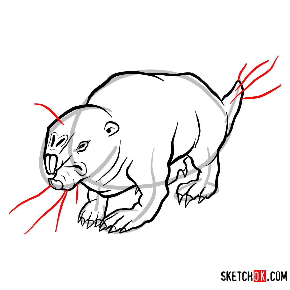 How to draw the Mole rat | Fallout - step 10