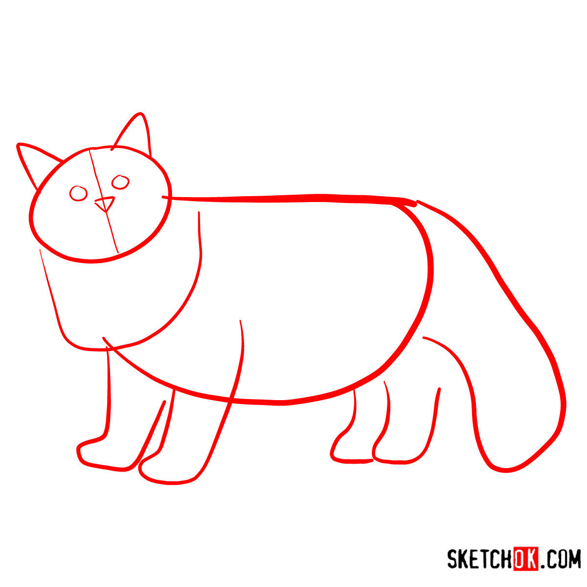 How to draw the Siberian cat - step 01