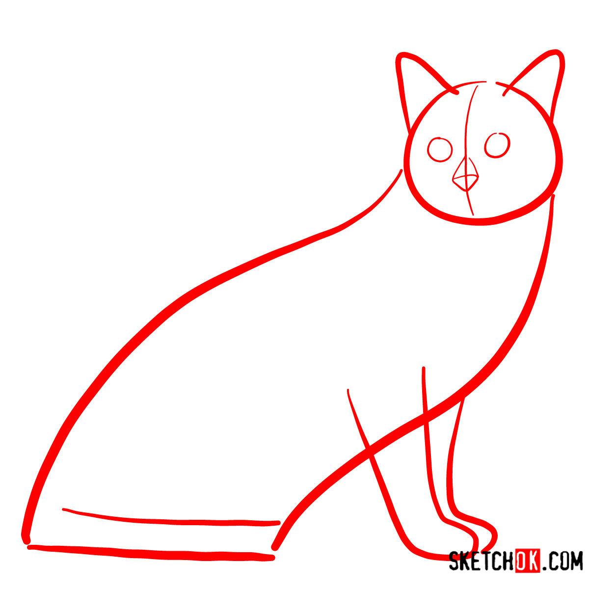 How to draw the Tonkinese cat - step 01