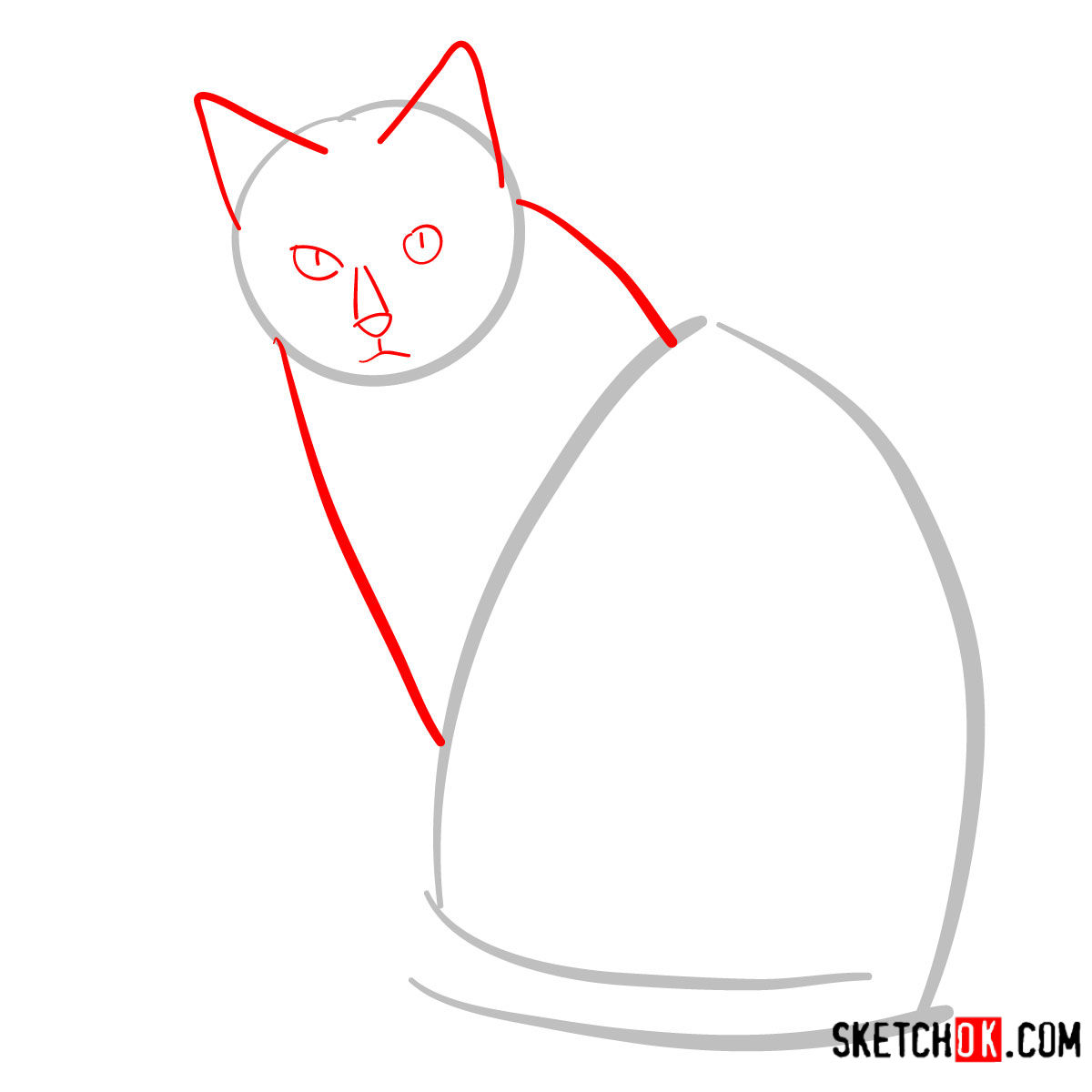 How to draw the Siamese cat - step 02