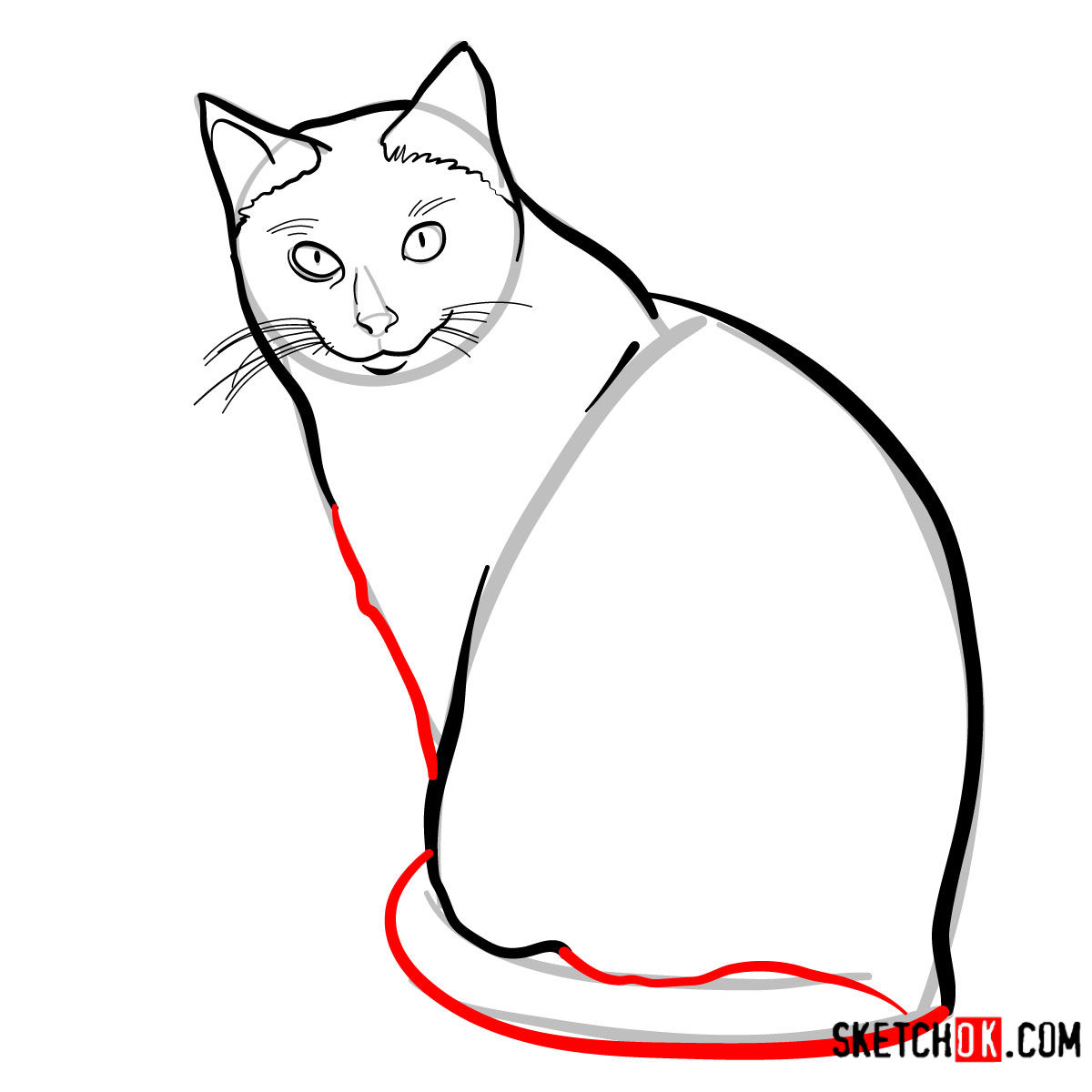 How to draw the Siamese cat - step 07