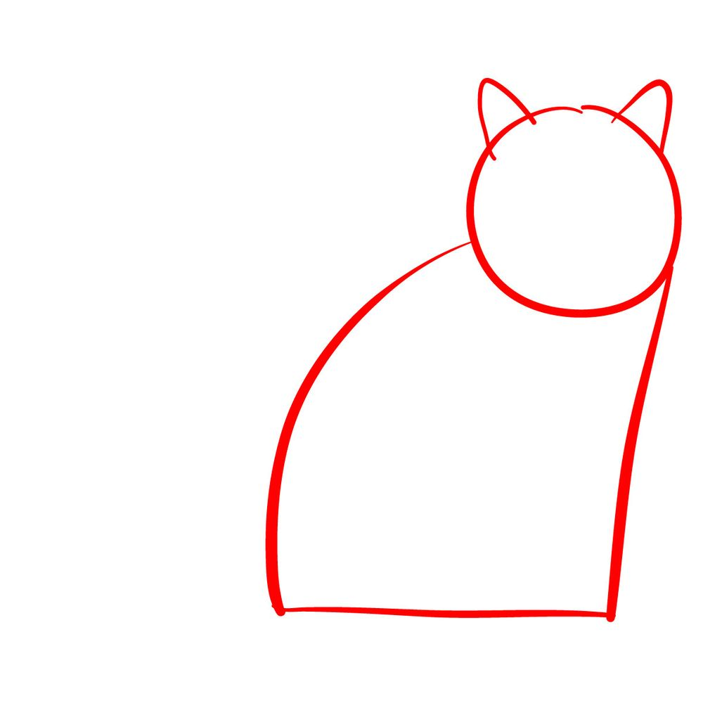 How to draw the British Shorthair cat - step 01