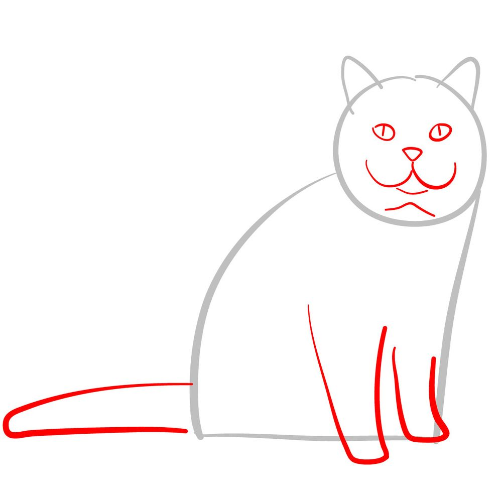 How to draw the British Shorthair cat - step 02