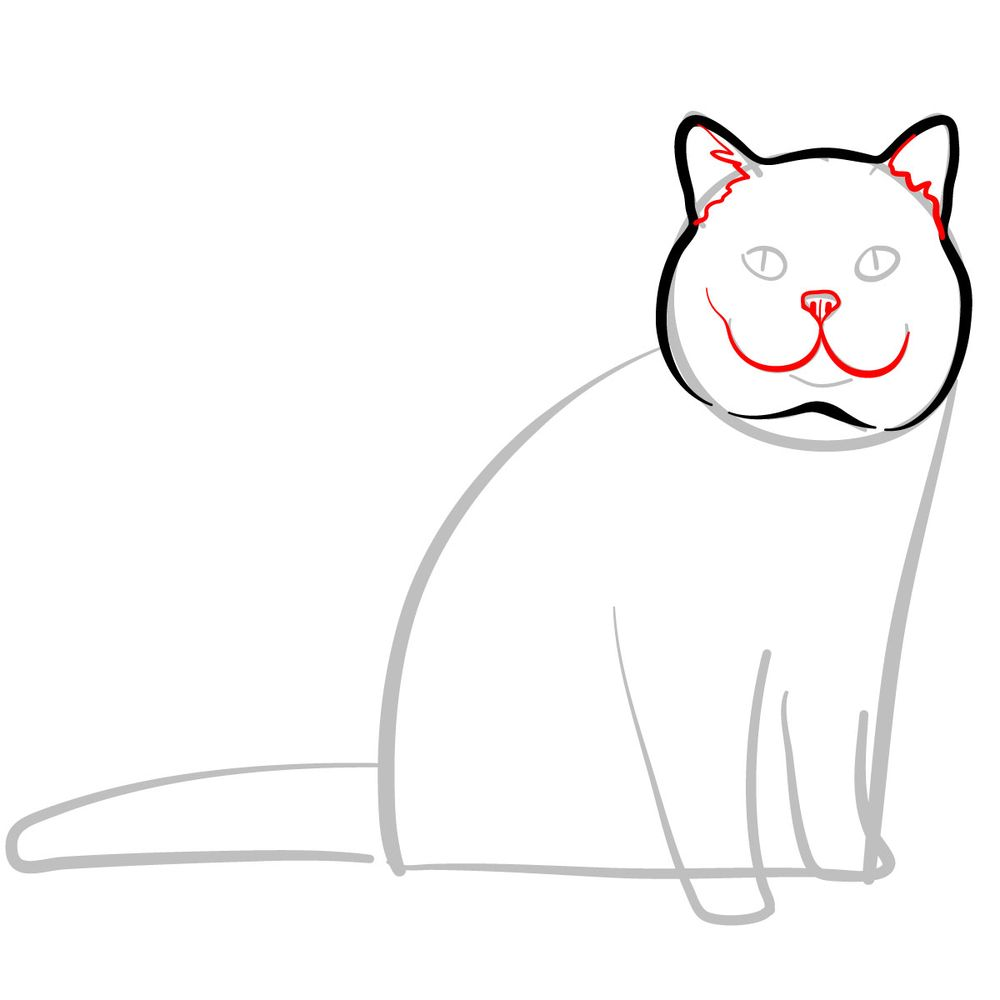 How to draw the British Shorthair cat - step 04