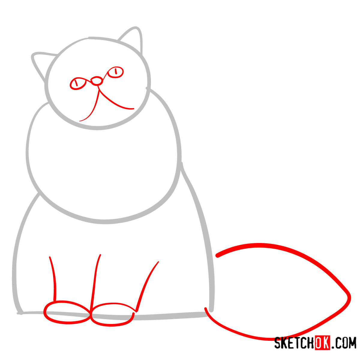 How to draw the Persian cat - step 02