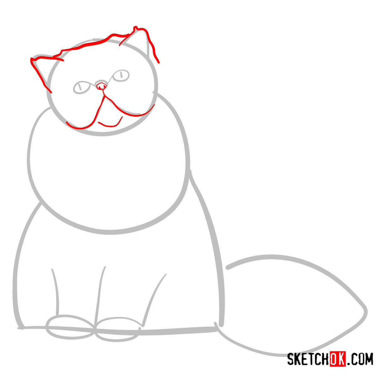 How to draw the Persian cat - step 03