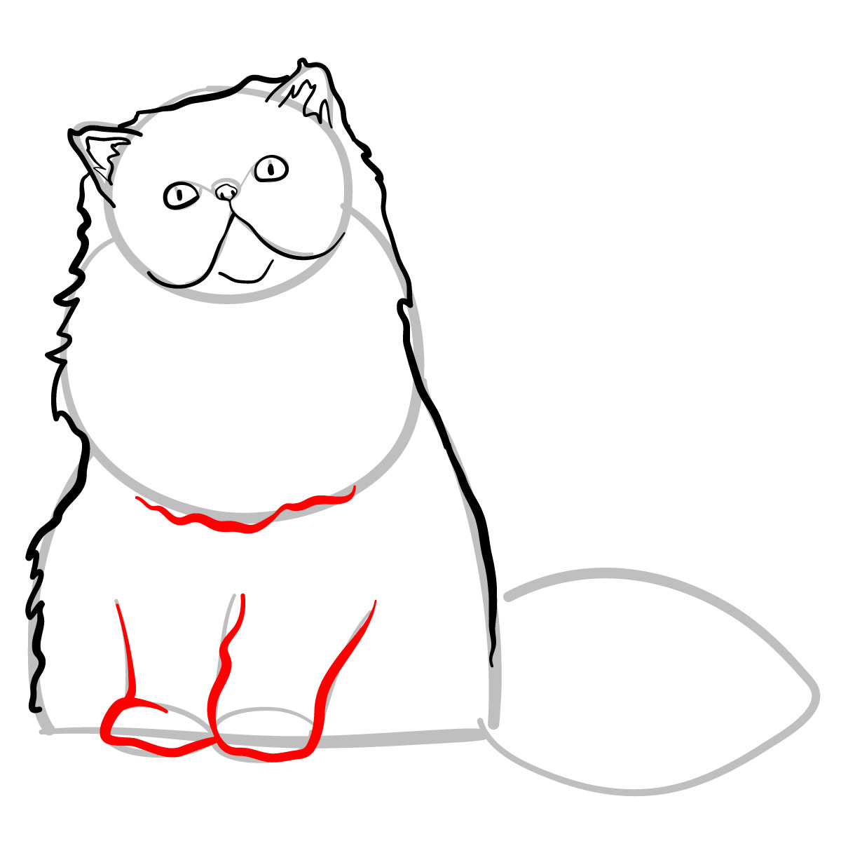 How to draw the Persian cat - step 06