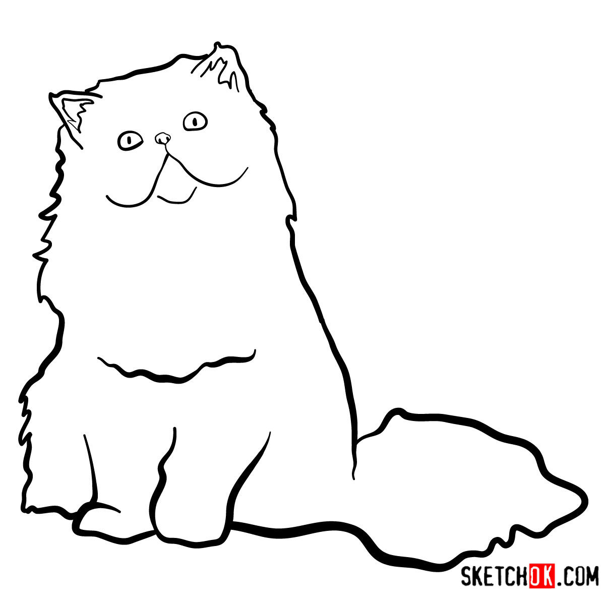 How to draw the Persian cat - step 08