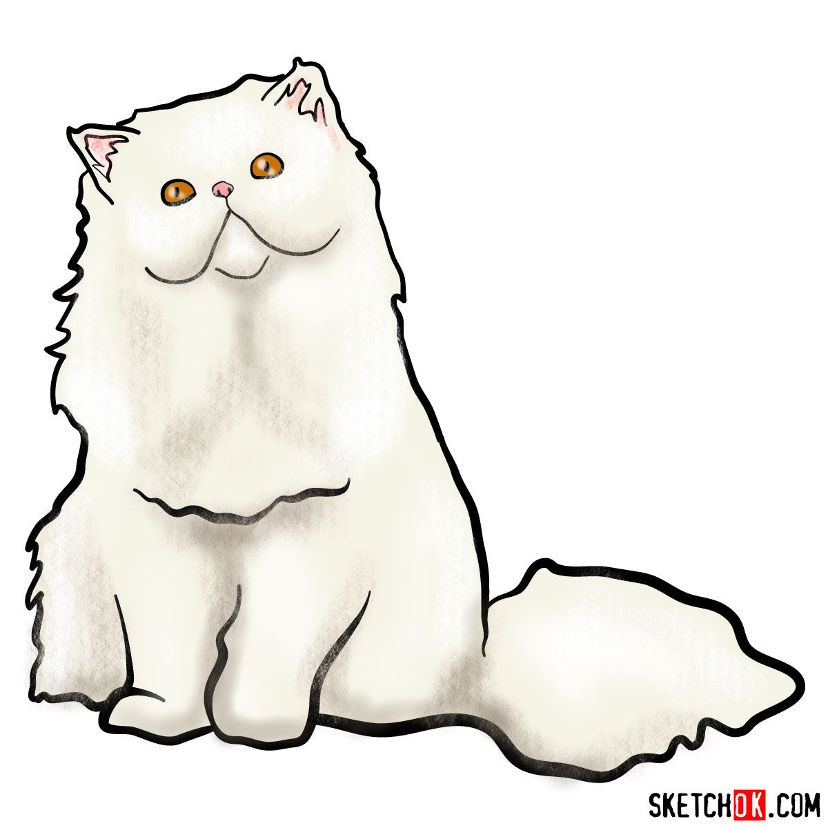 How To Draw The Persian Cat Step By Step Drawing Tutorials