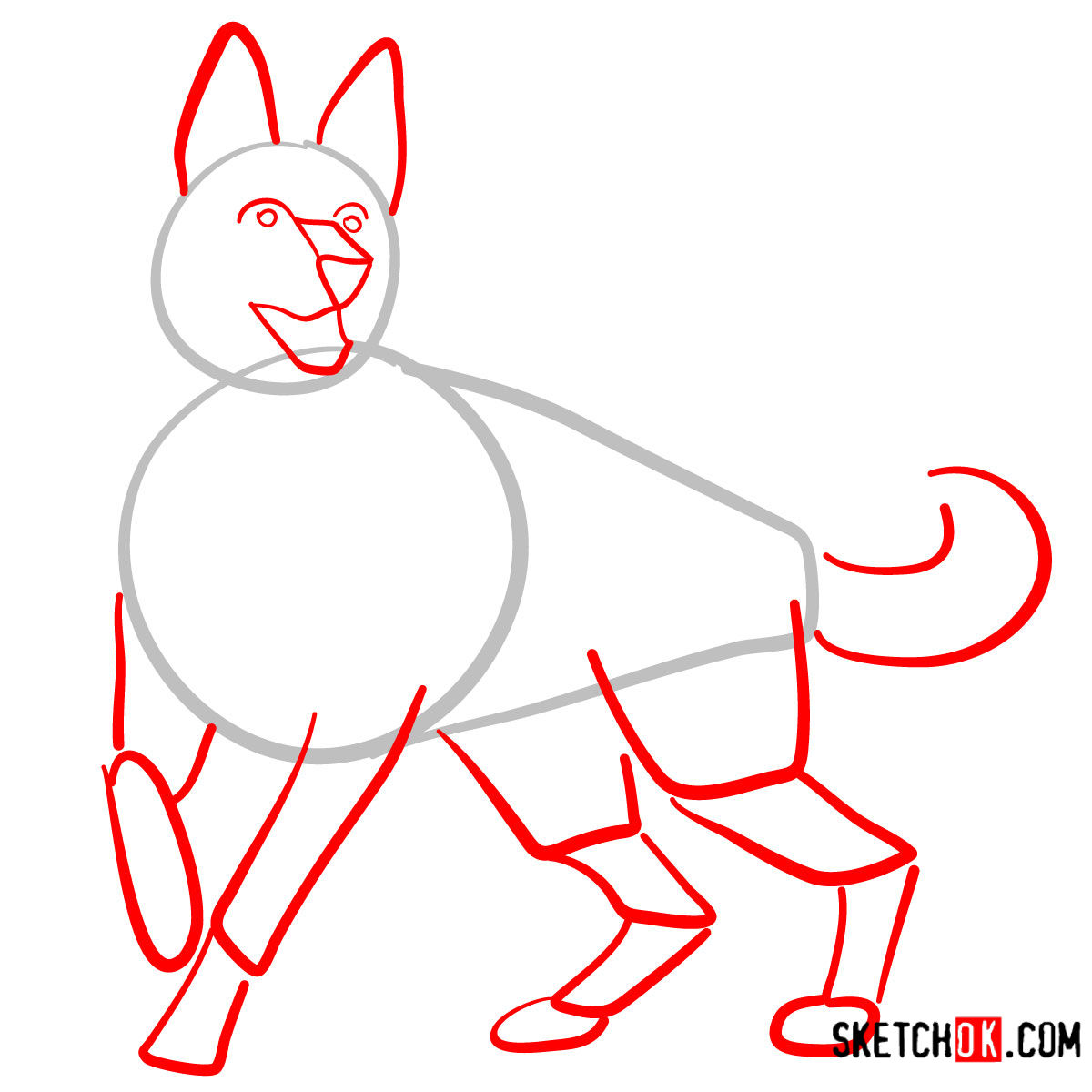 How to draw the German Shepherd dog - step 02