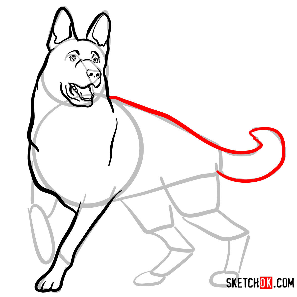 How to draw the German Shepherd dog - step 08