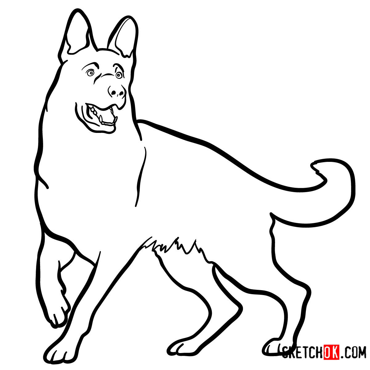 How to draw the German Shepherd dog