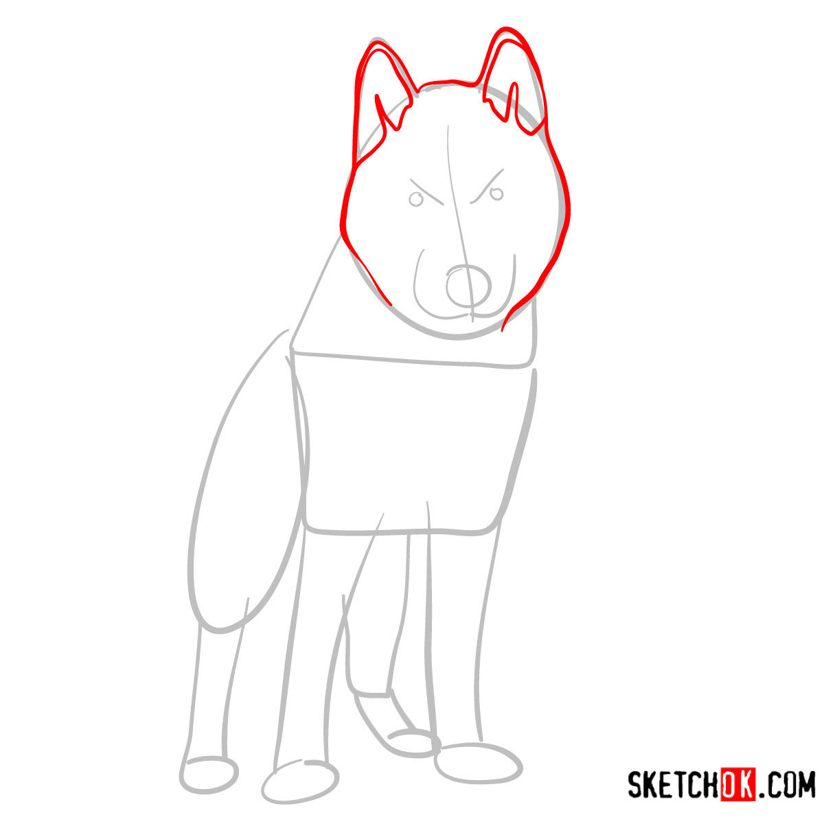 How to draw the Husky dog - step 03
