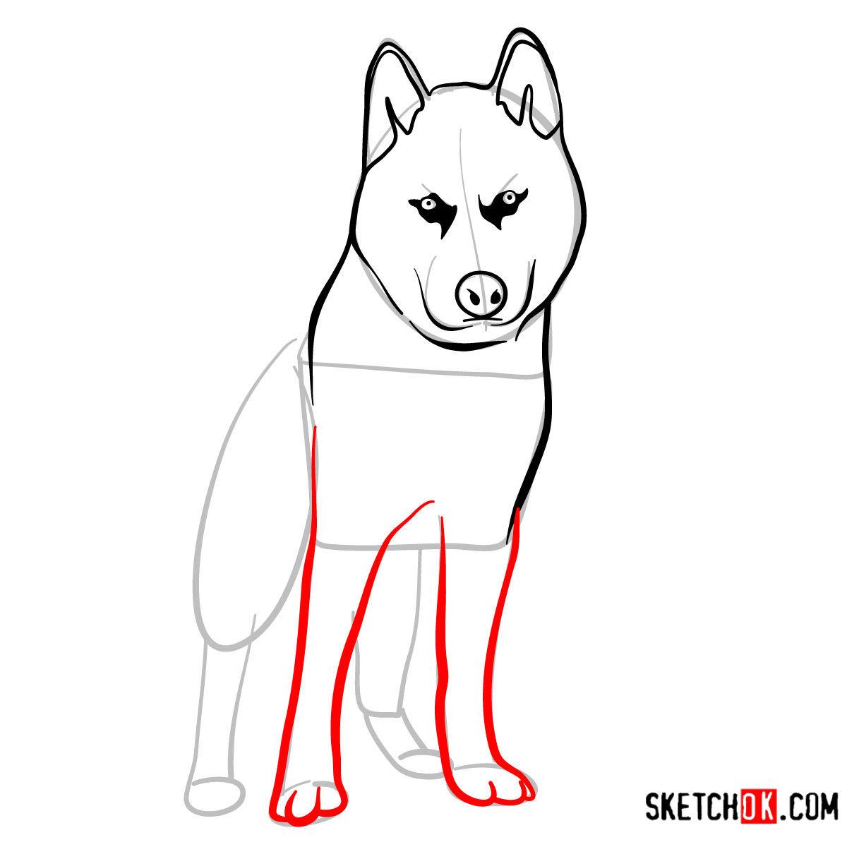 How to draw the Husky dog - step 06