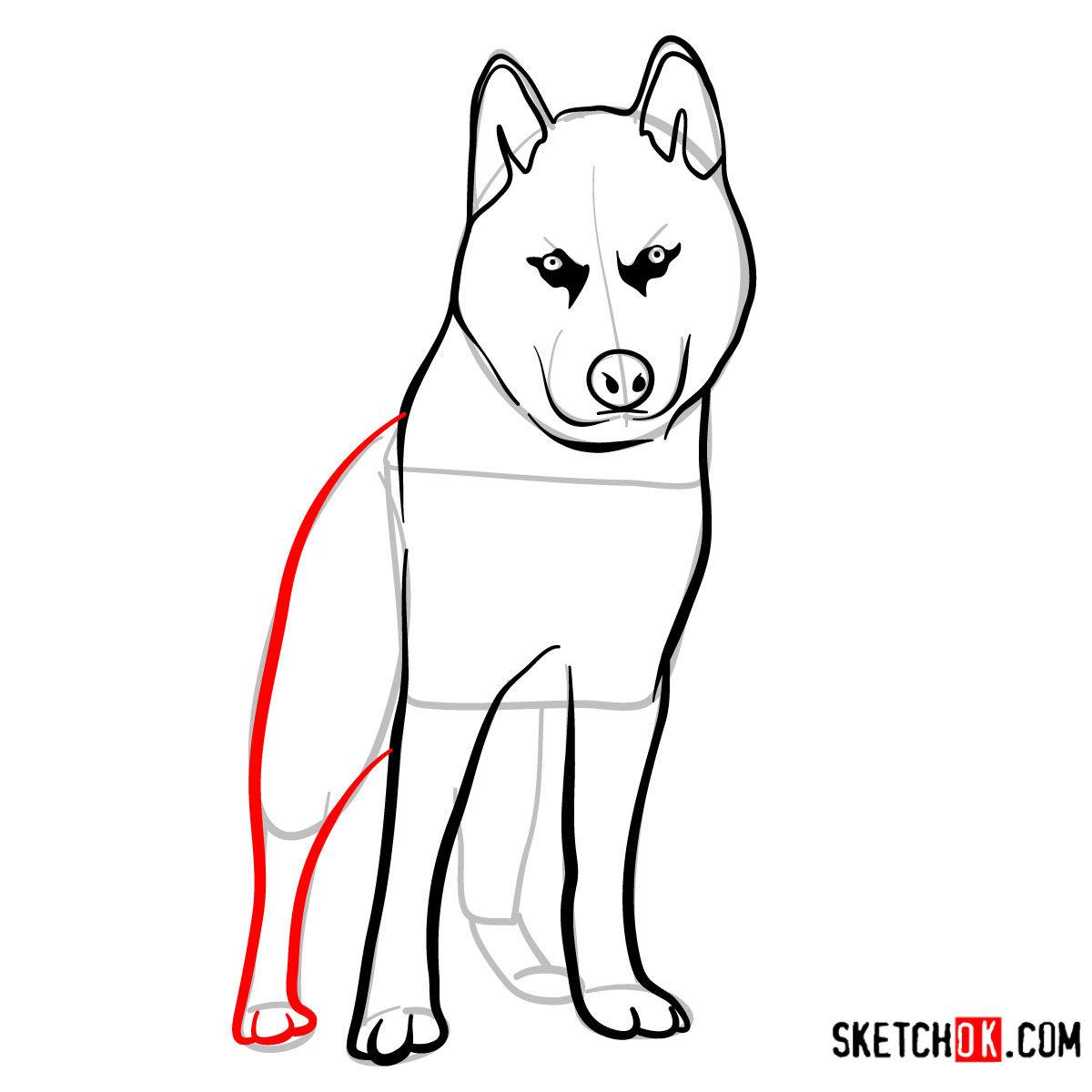 How to draw the Husky dog - step 07