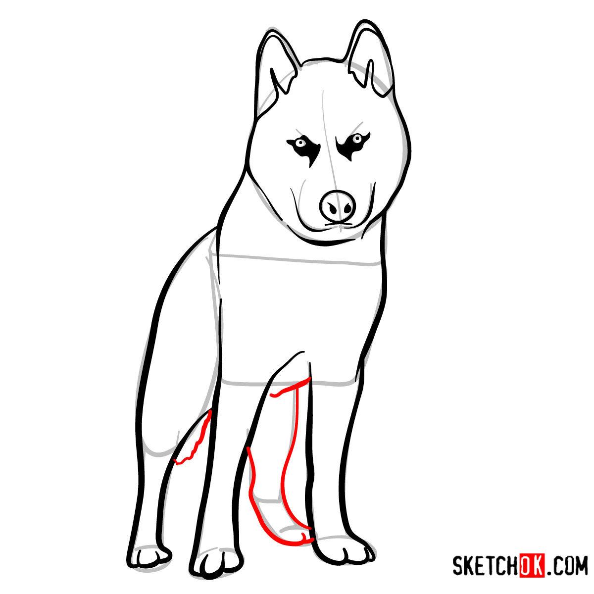 How to draw the Husky dog - step 08