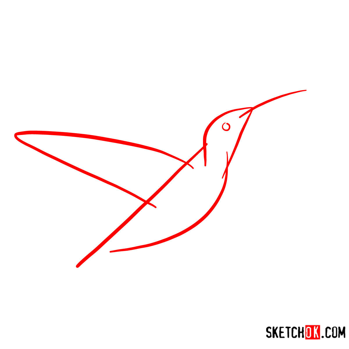 How to draw a Colibri bird | Birds - step 01