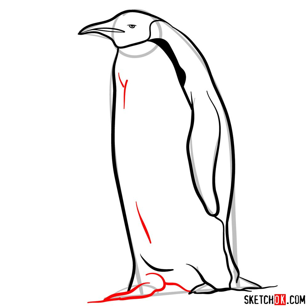 How to draw an emperor penguin - step 08