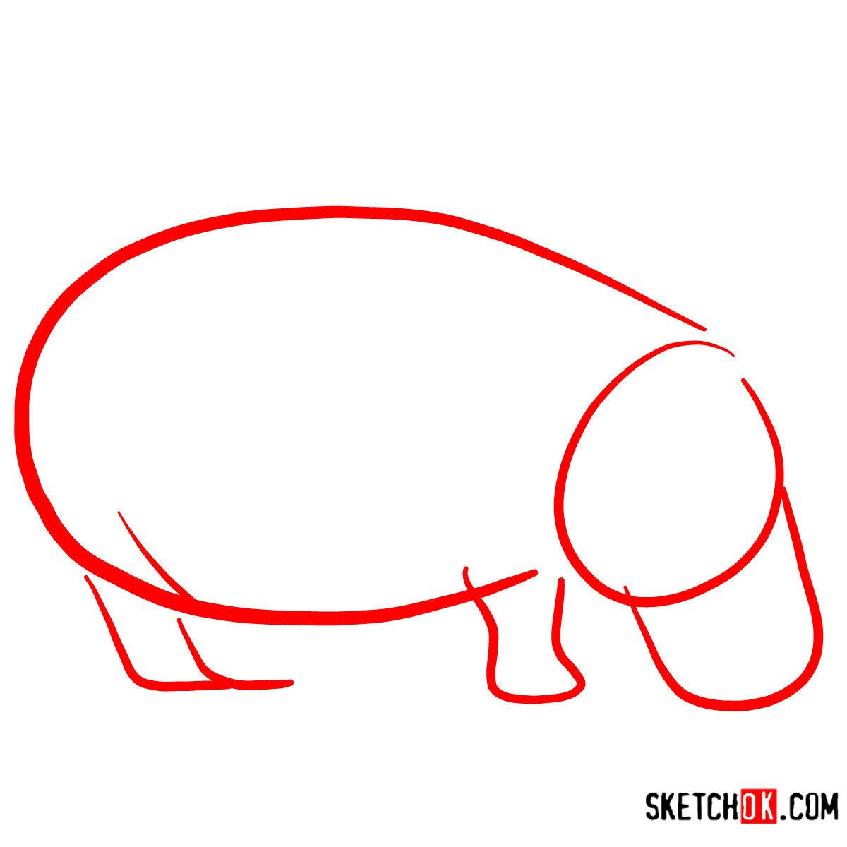 How to draw a Hippopotamus | Wild Animals - step 01