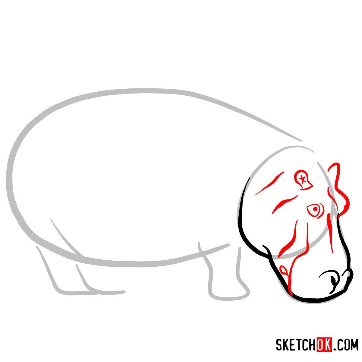 How to draw a Hippopotamus | Wild Animals - step 03