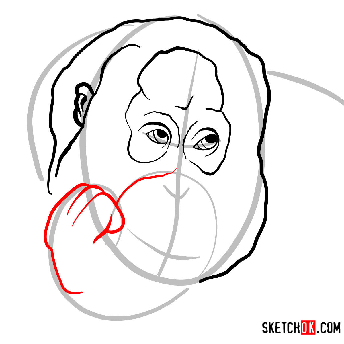 How to draw Orangutan's head | Wild Animals - step 04