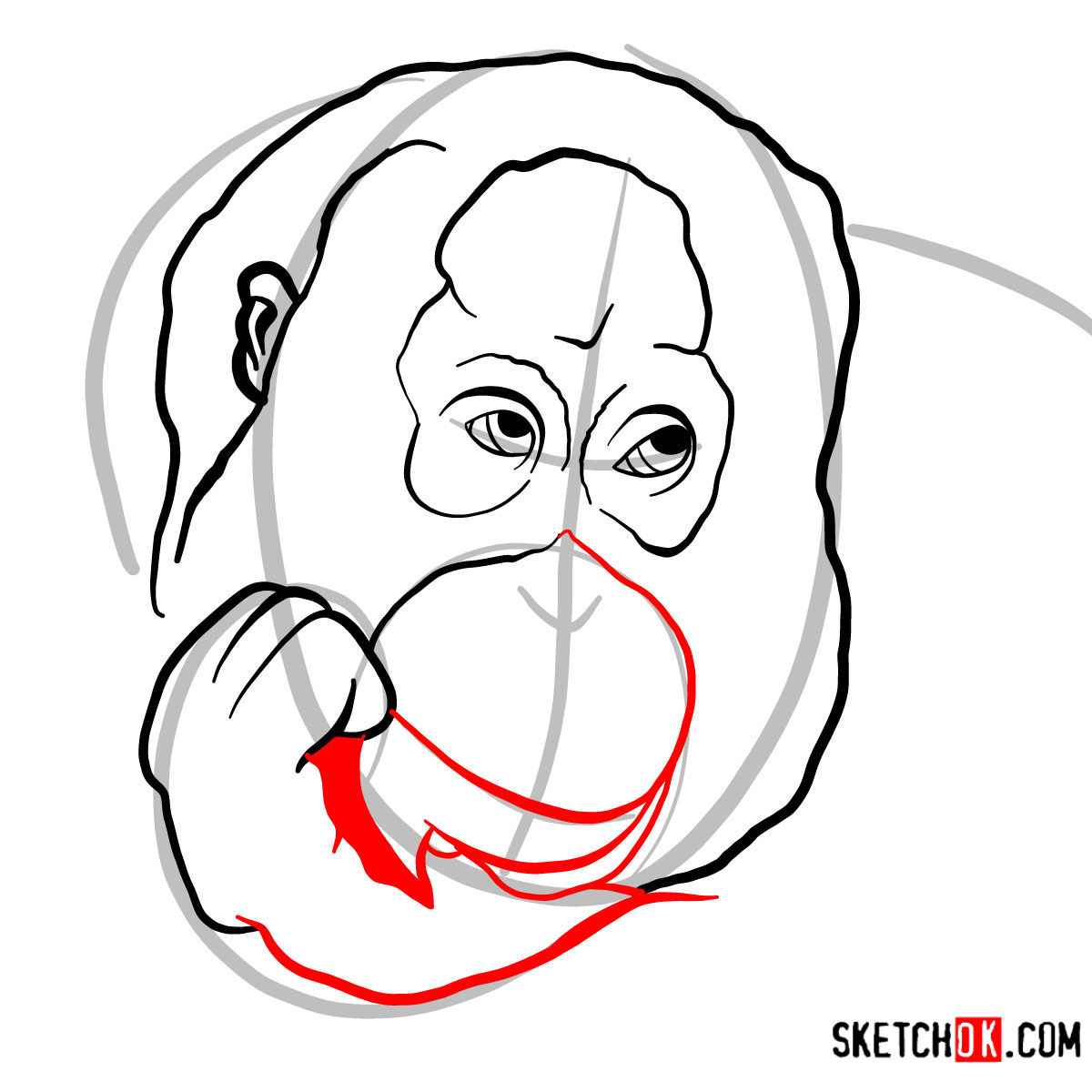 How to draw Orangutan's head | Wild Animals - step 05