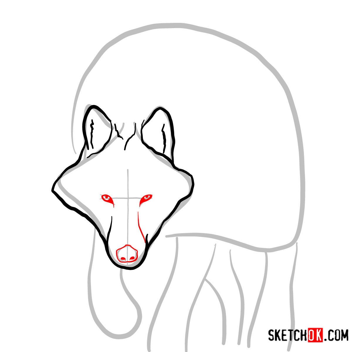 How to draw an Arctic wolf | Wild Animals - step 03