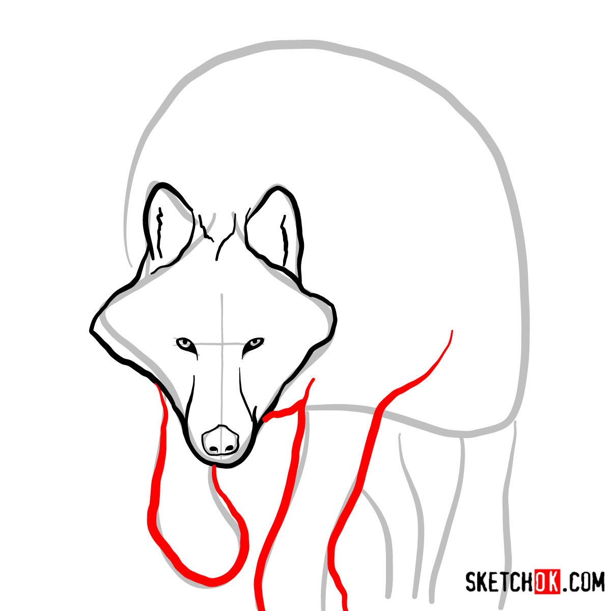How to draw an Arctic wolf | Wild Animals - step 04