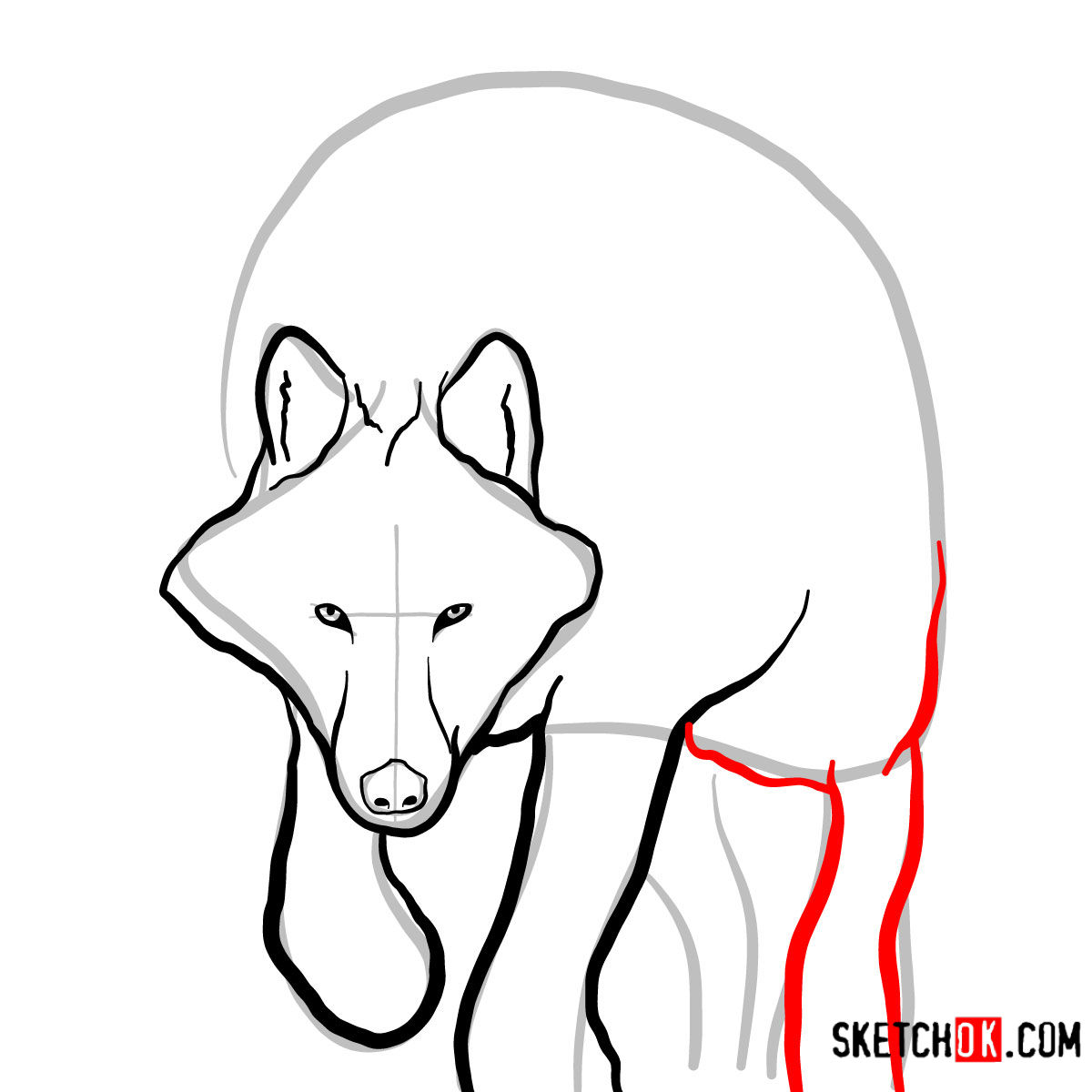 How to draw an Arctic wolf | Wild Animals - step 05
