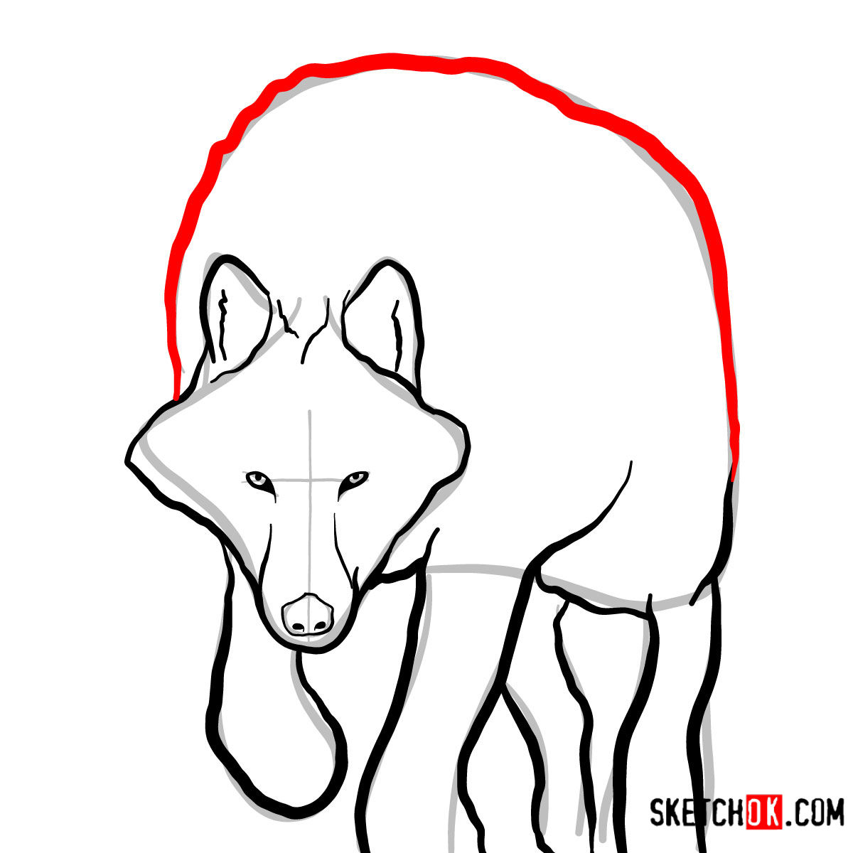 How to draw an Arctic wolf | Wild Animals - step 07