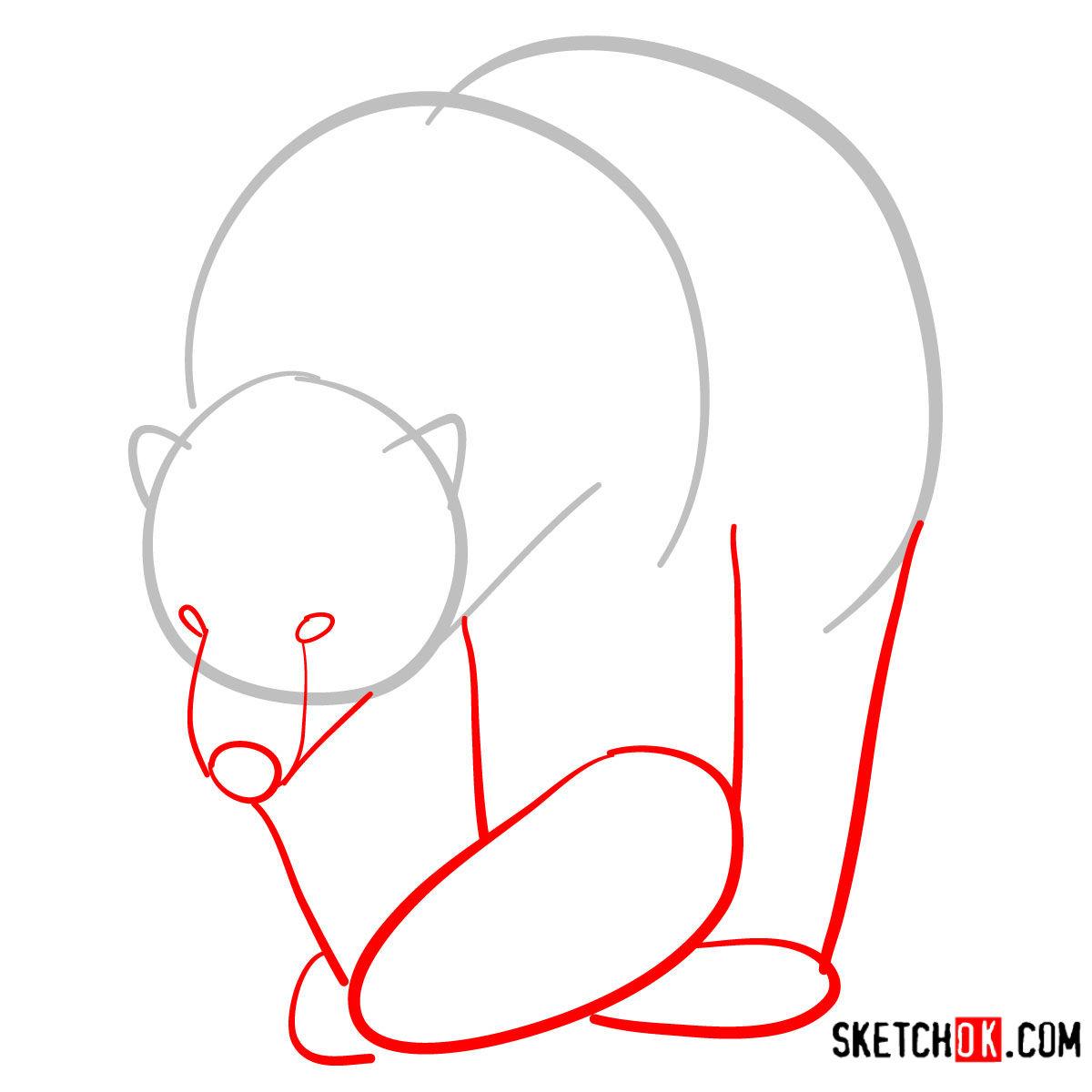 How to draw a polar bear | Wild Animals - step 02
