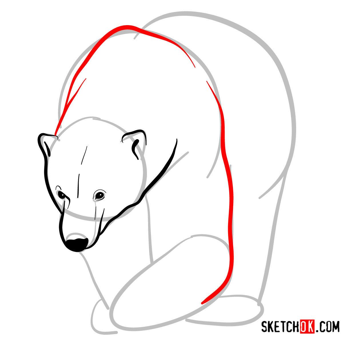 How to draw a polar bear | Wild Animals - step 05