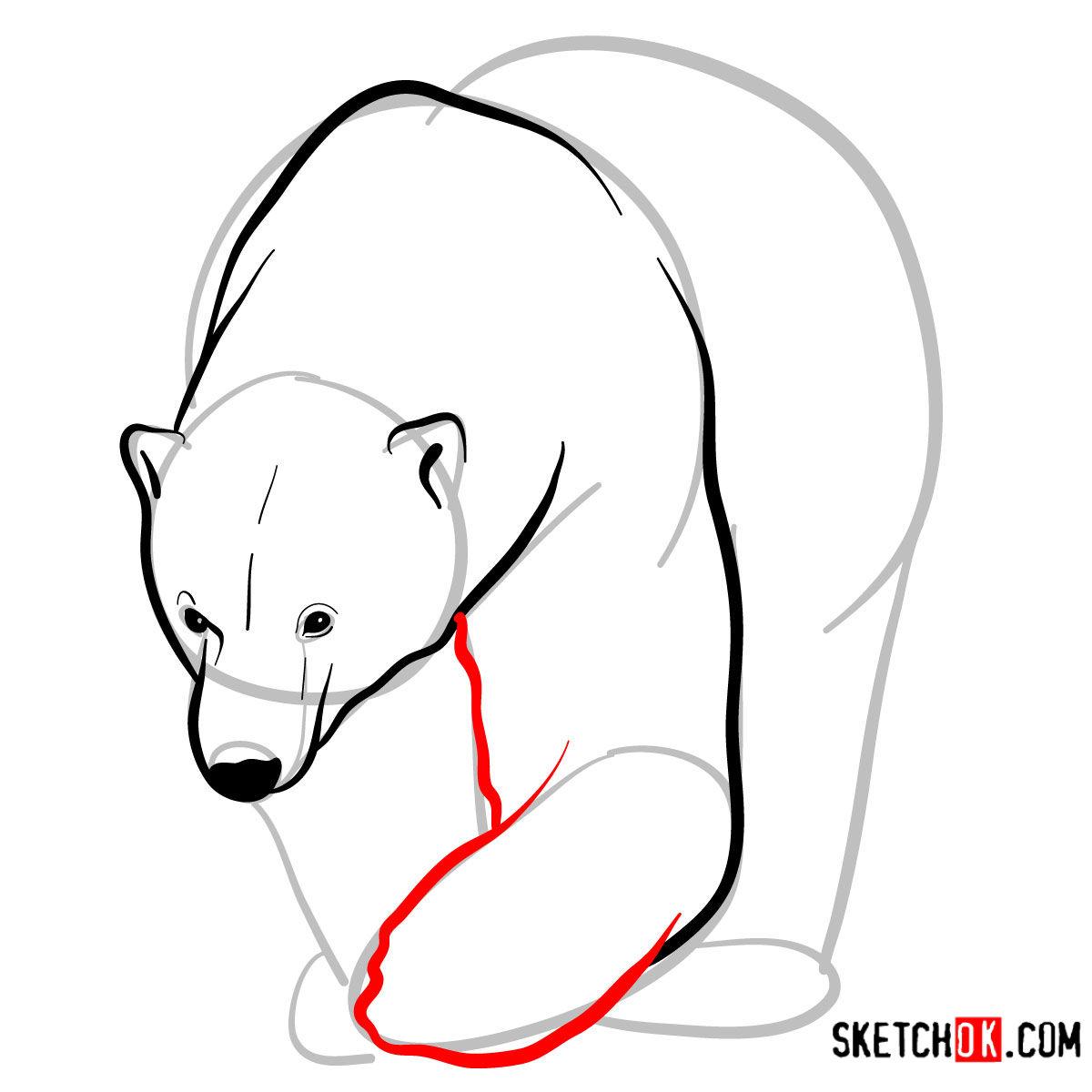 How to draw a polar bear | Wild Animals - step 06