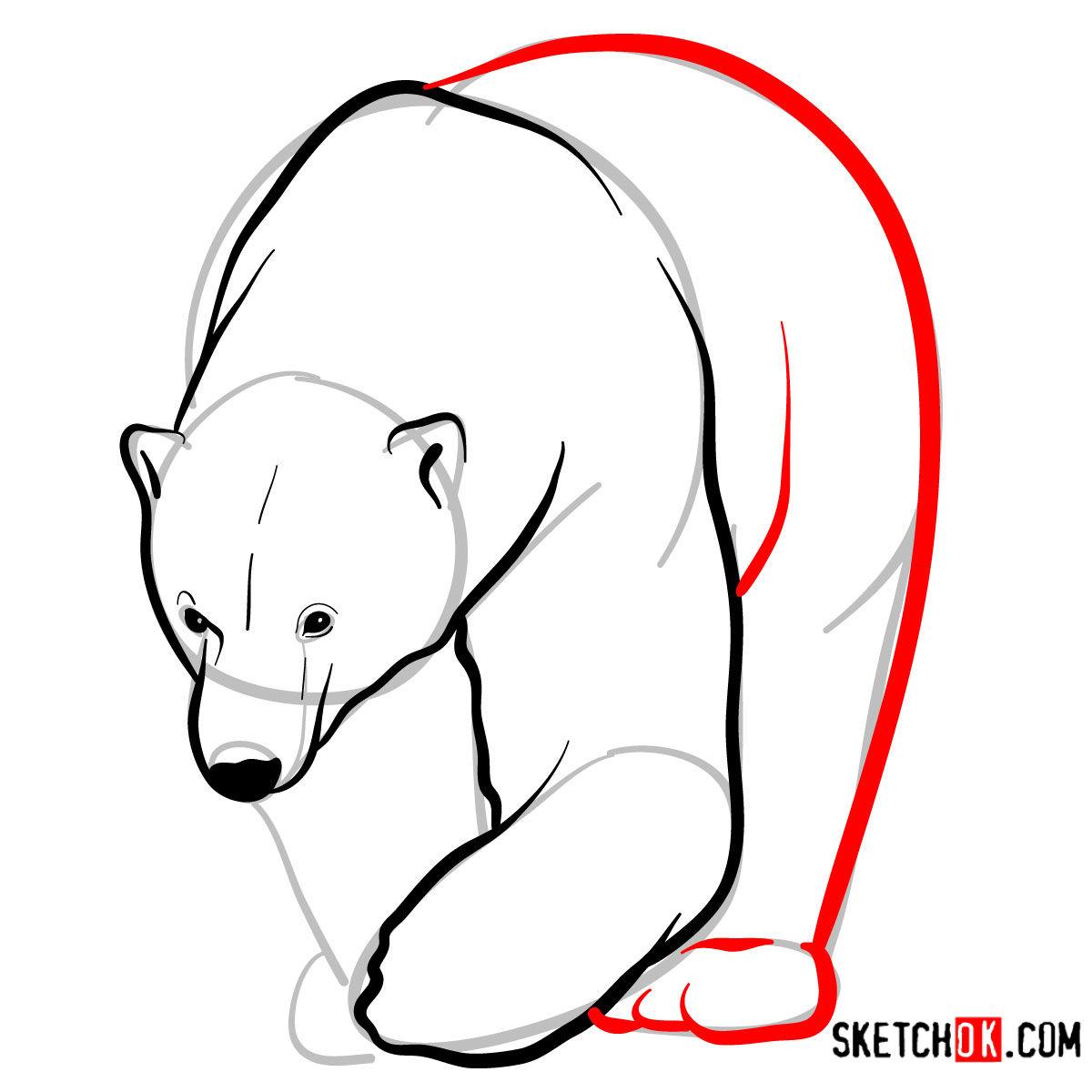 How to draw a polar bear | Wild Animals - step 07