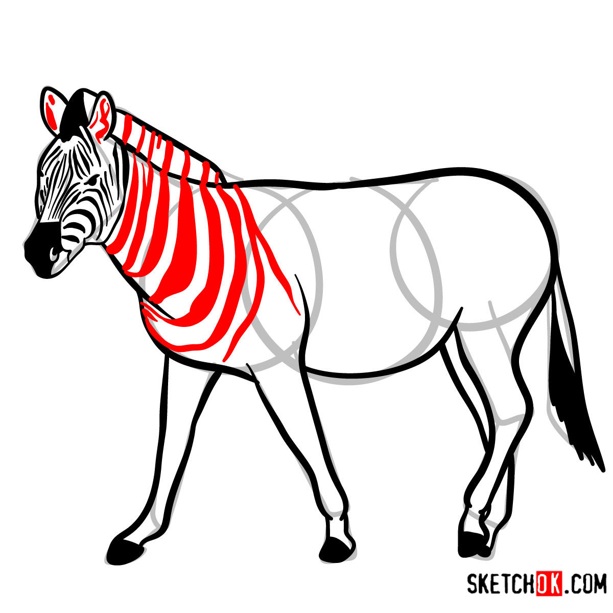 How to draw a Zebra | Wild Animals - step 11