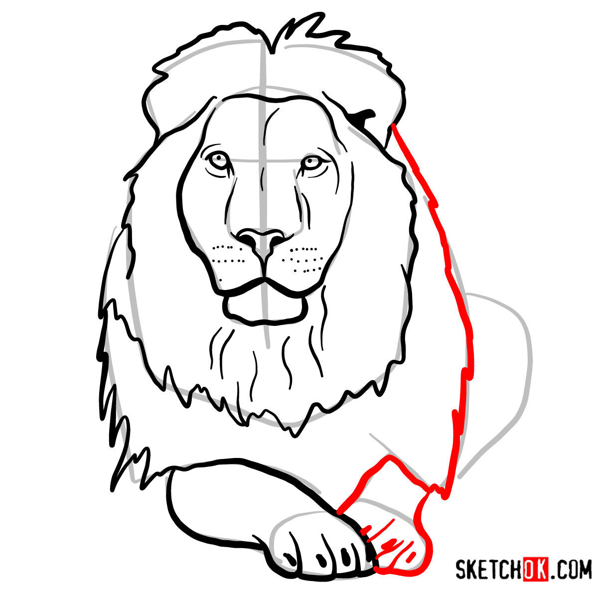 How to draw a Lion head | Wild Animals - step 09