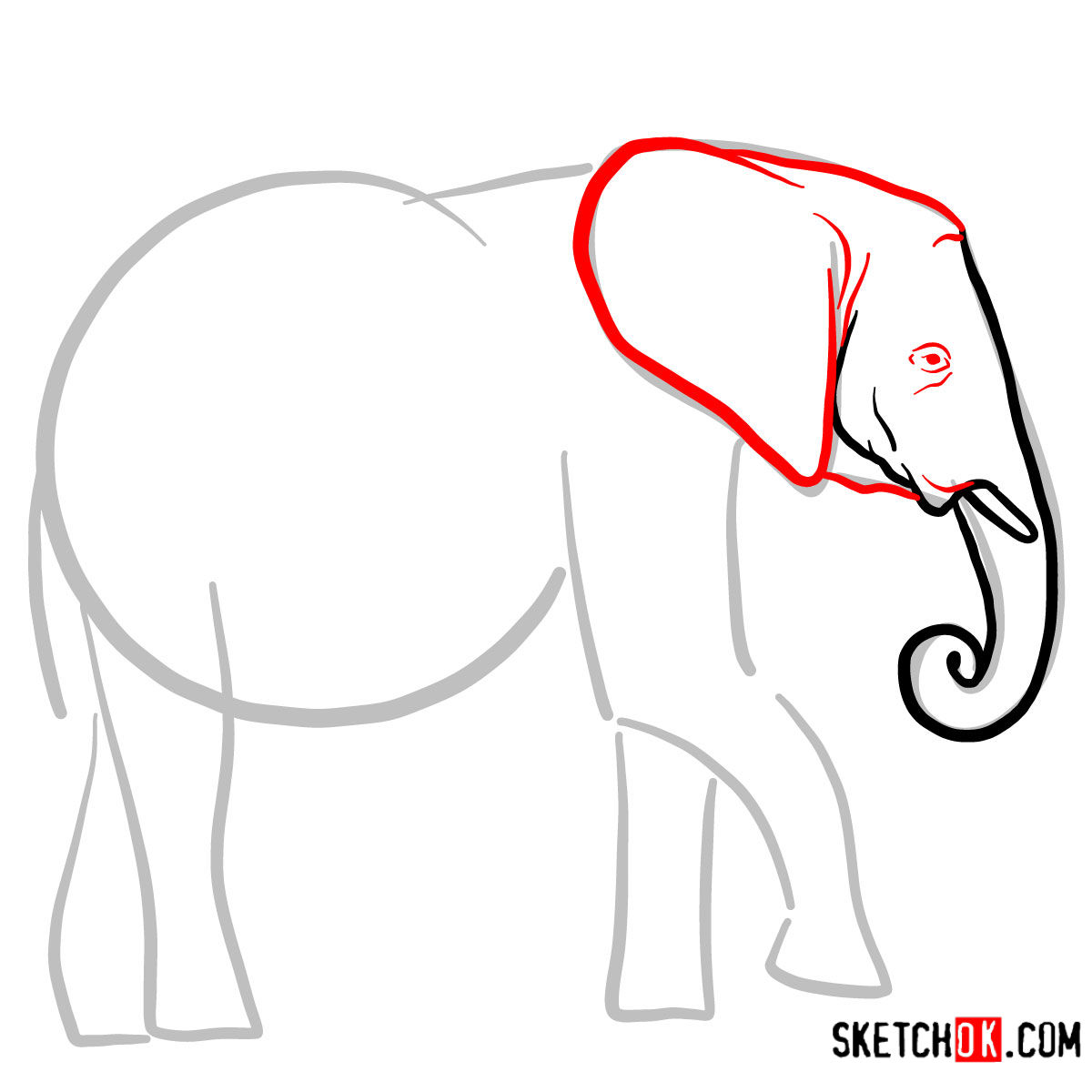 How to draw an Elephant side view | Wild Animals - step 03
