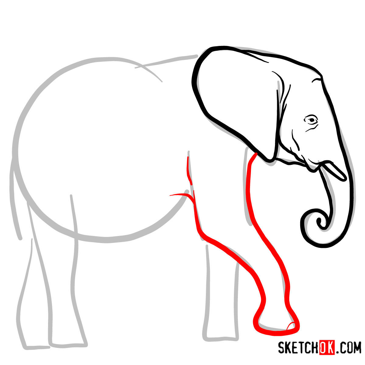 How to draw an Elephant side view | Wild Animals - step 04