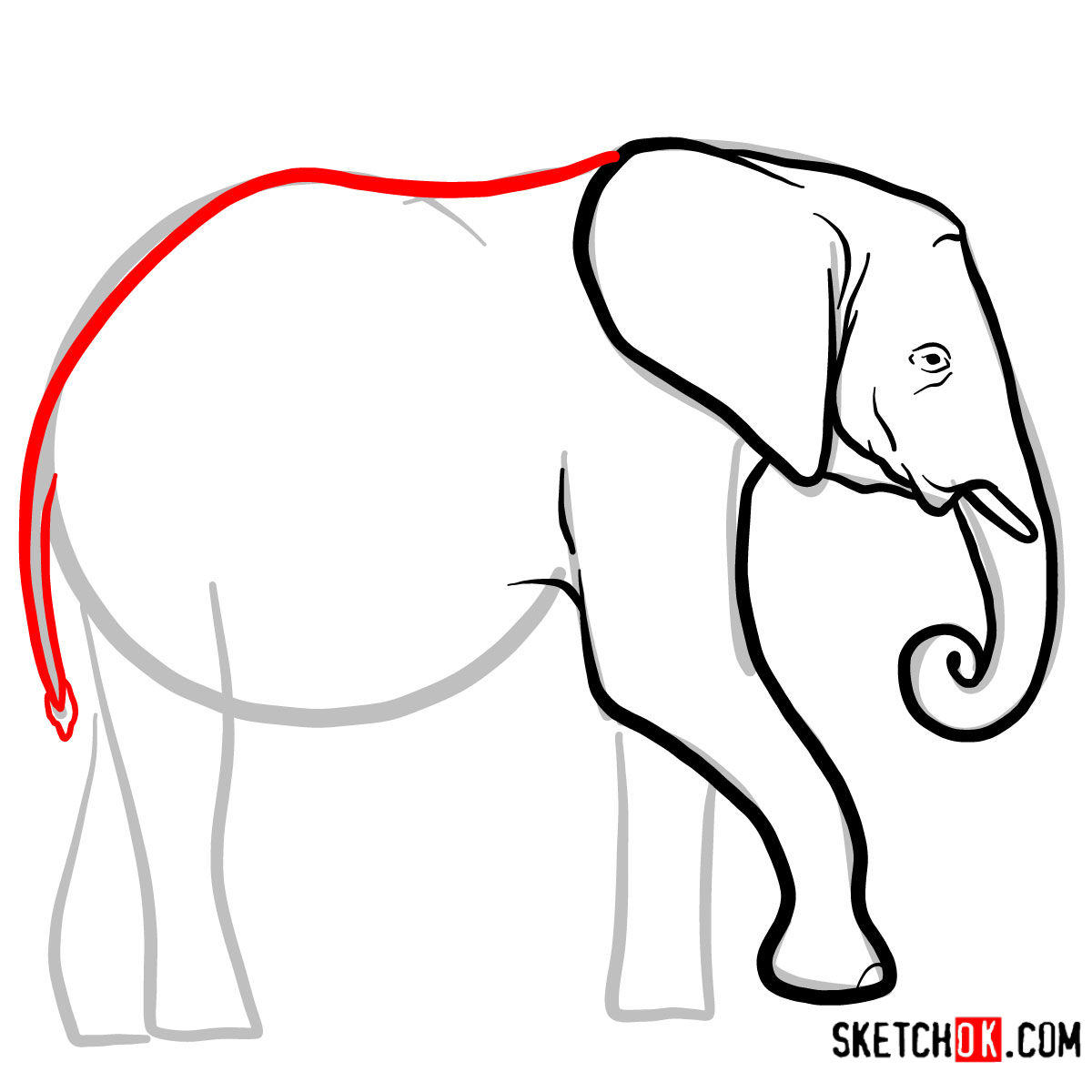 How to draw an Elephant side view | Wild Animals - step 05