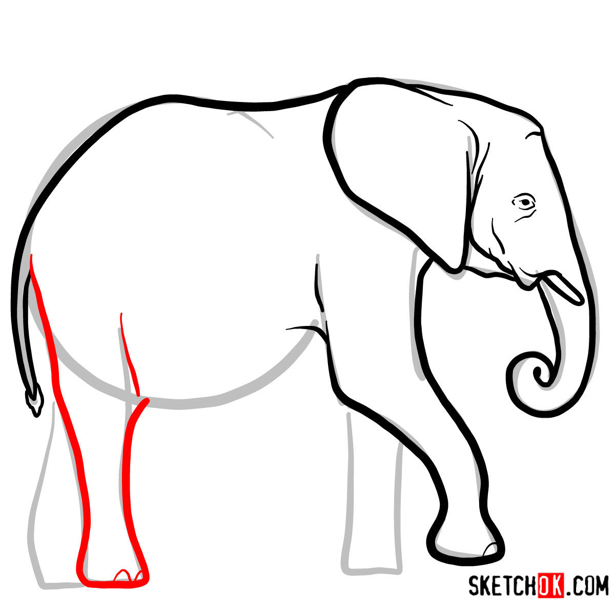 How to draw an Elephant side view | Wild Animals - step 06