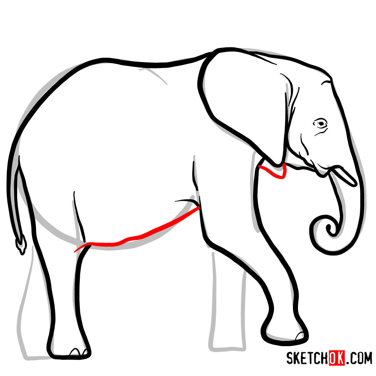 How to draw an Elephant side view | Wild Animals - step 07