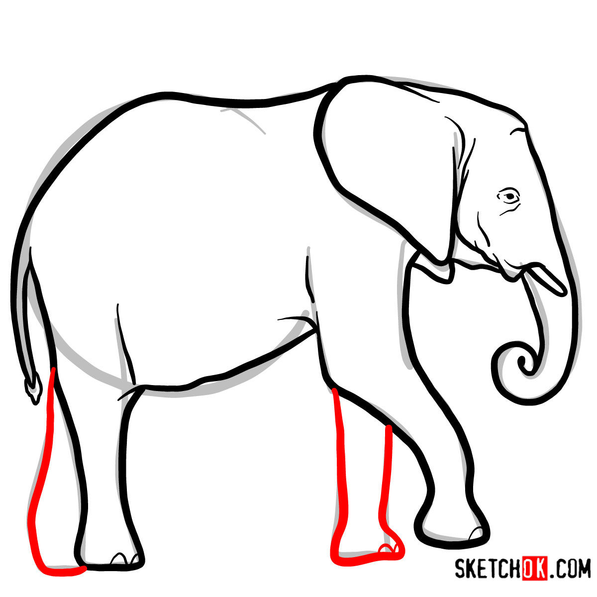 How to draw an Elephant side view | Wild Animals - step 08