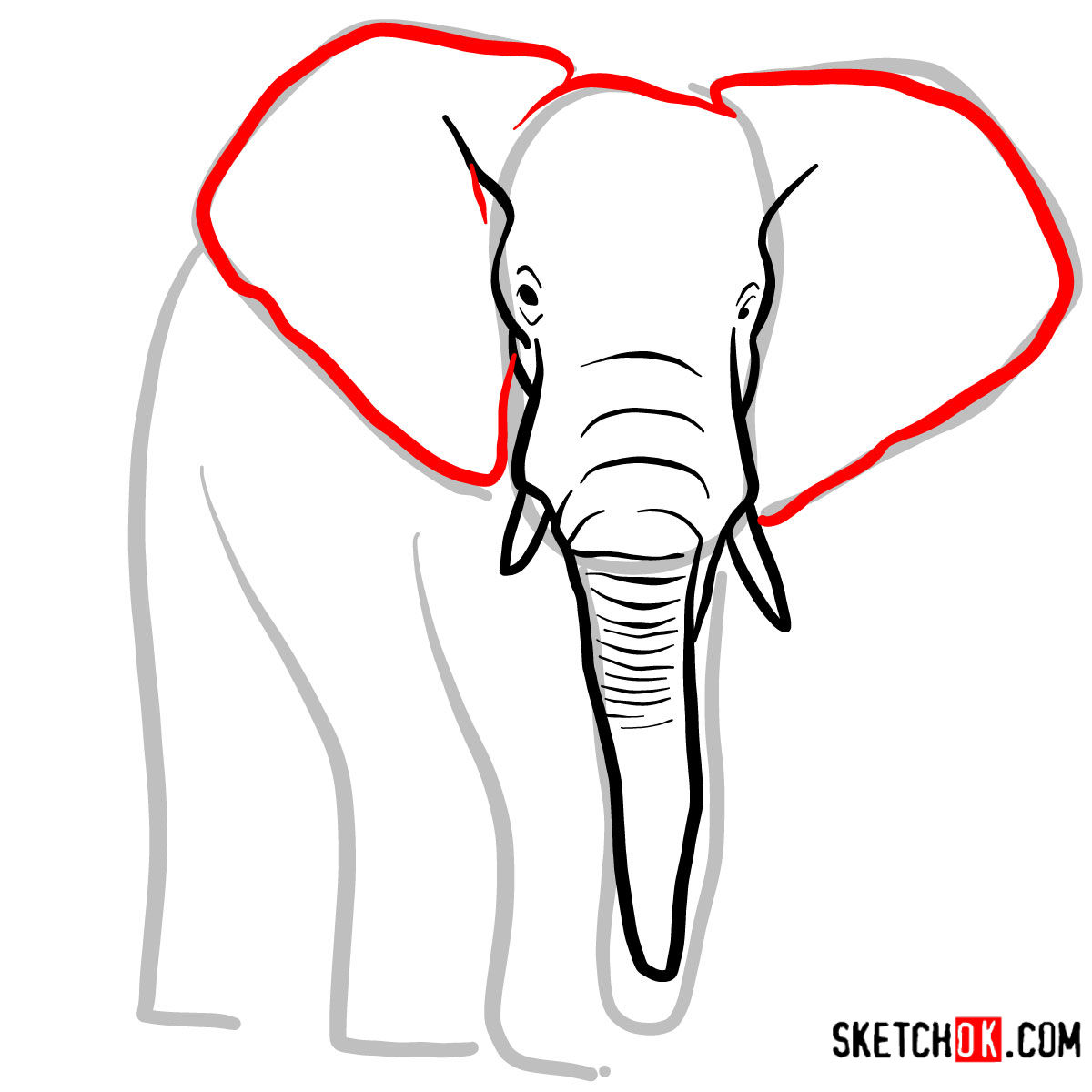 How to draw an Elephant front view | Wild Animals - step 04