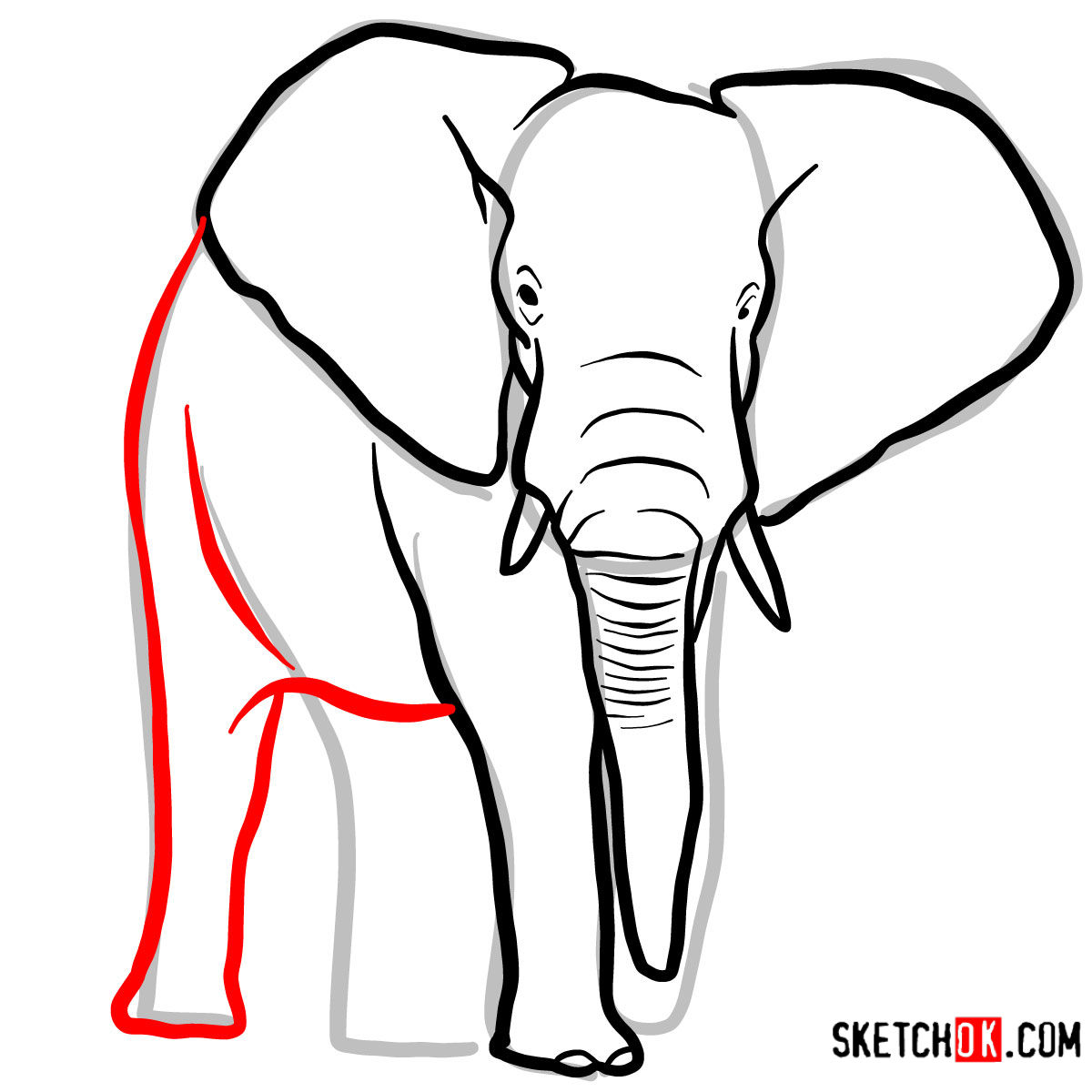 How to draw an Elephant front view | Wild Animals - step 06