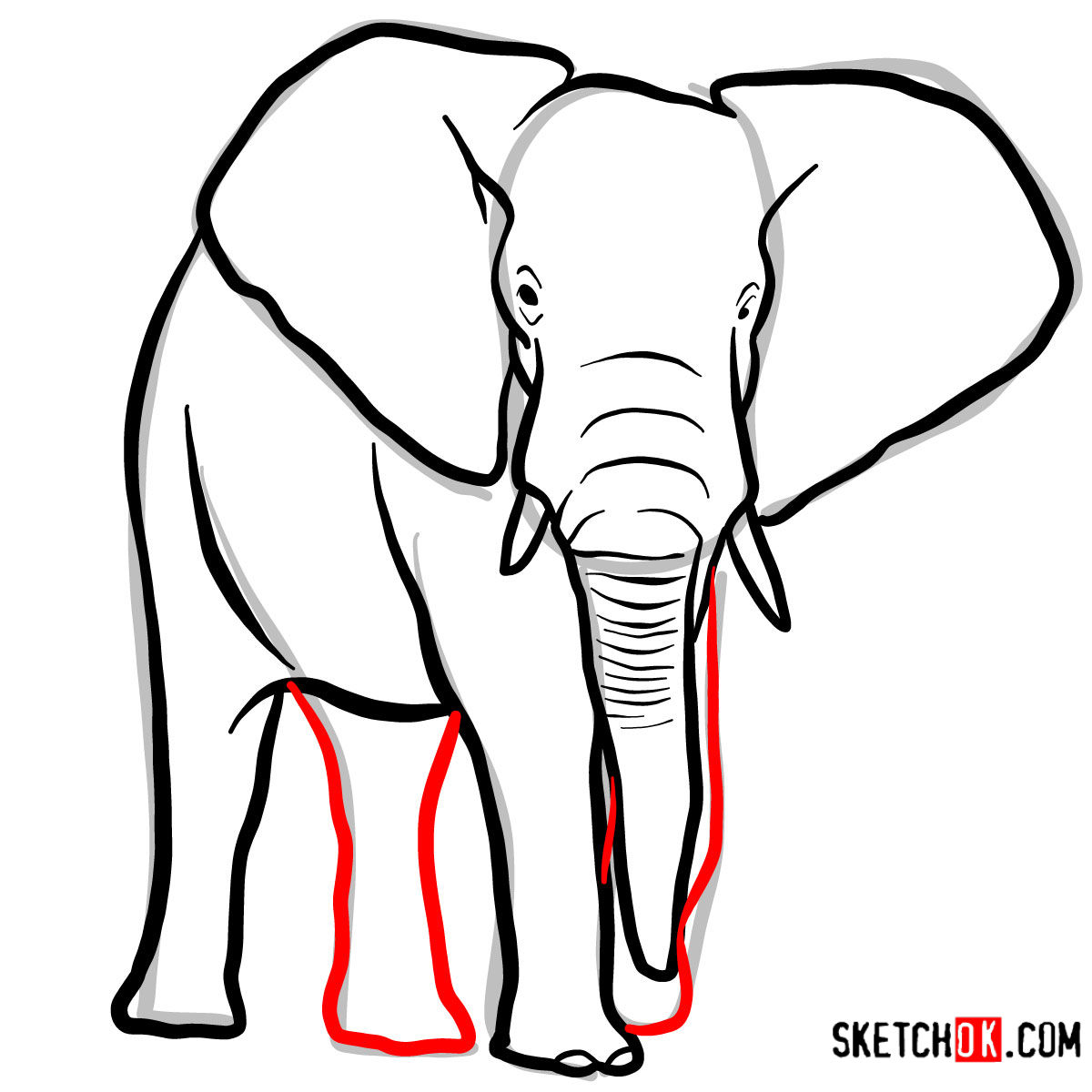How to draw an Elephant front view | Wild Animals - step 07