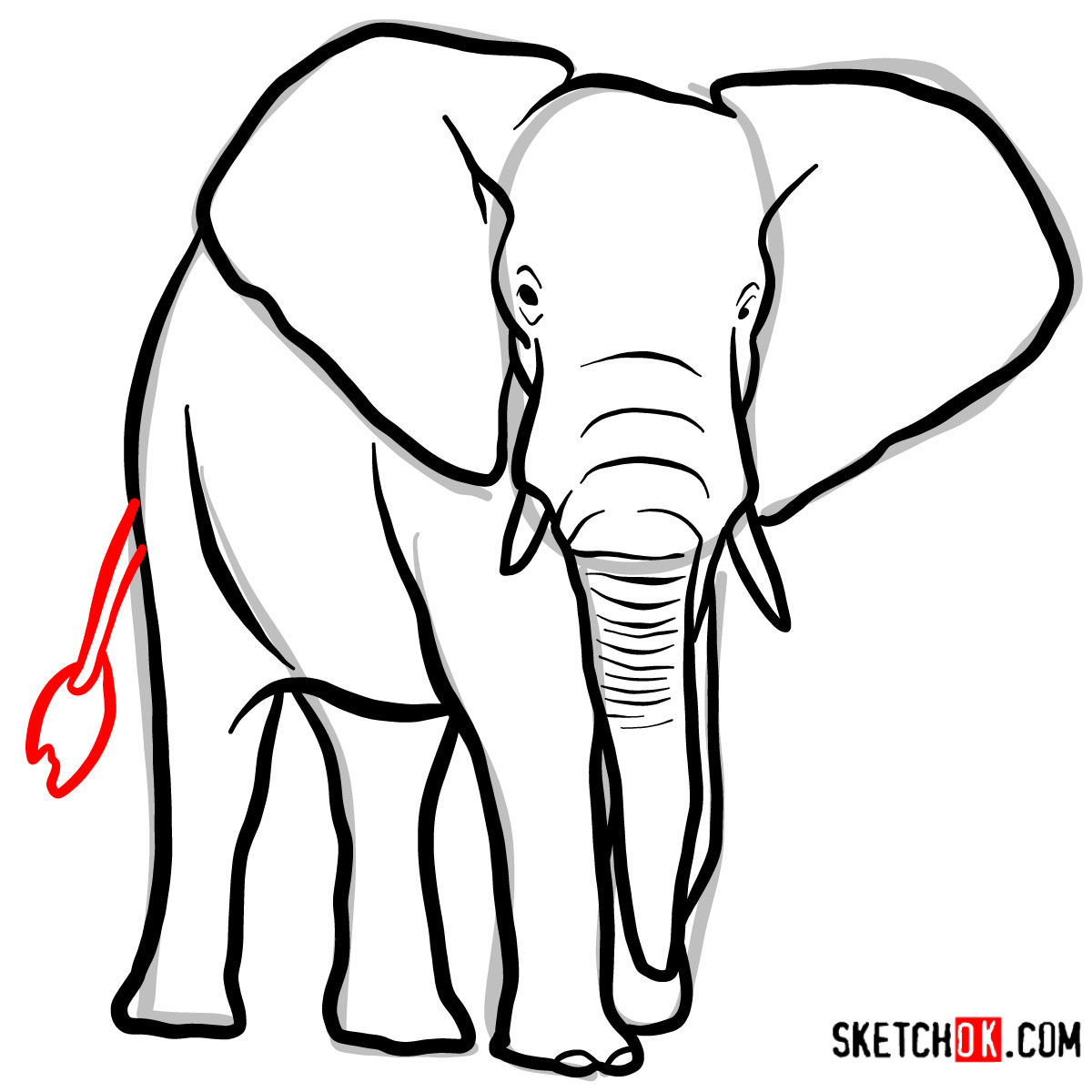 How to draw an Elephant front view | Wild Animals - step 08