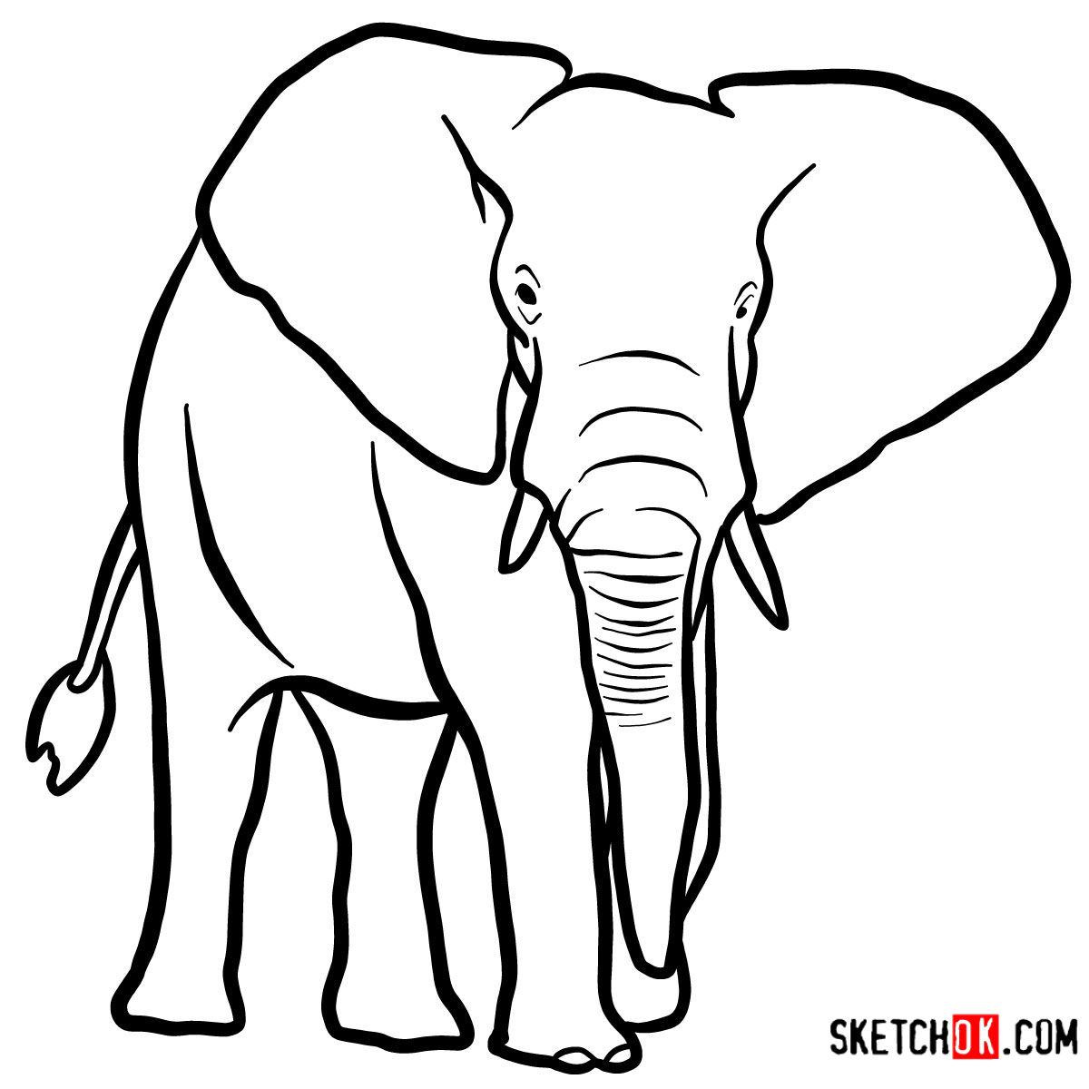 How To Draw An Elephant Front View Wild Animals Step By Step