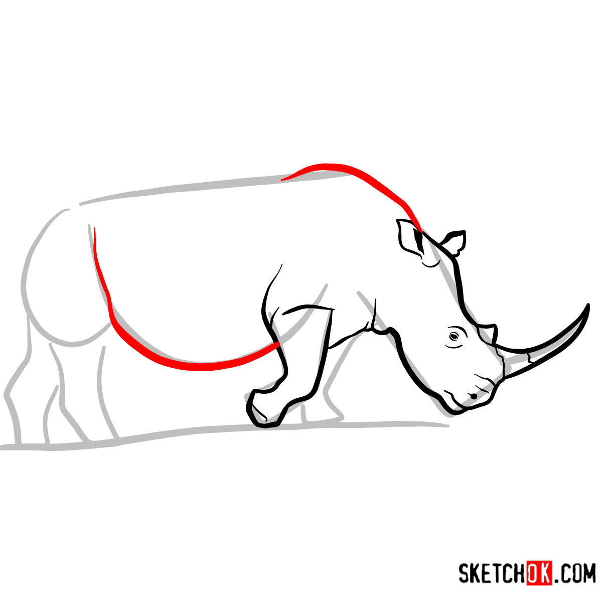 How to draw a Rhinoceros | Wild Animals - step 06