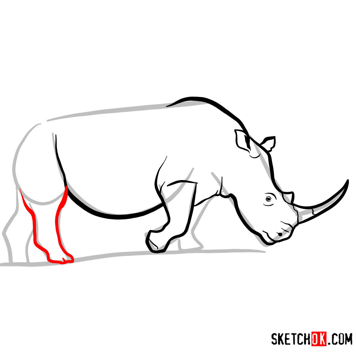 How to draw a Rhinoceros | Wild Animals - step 07