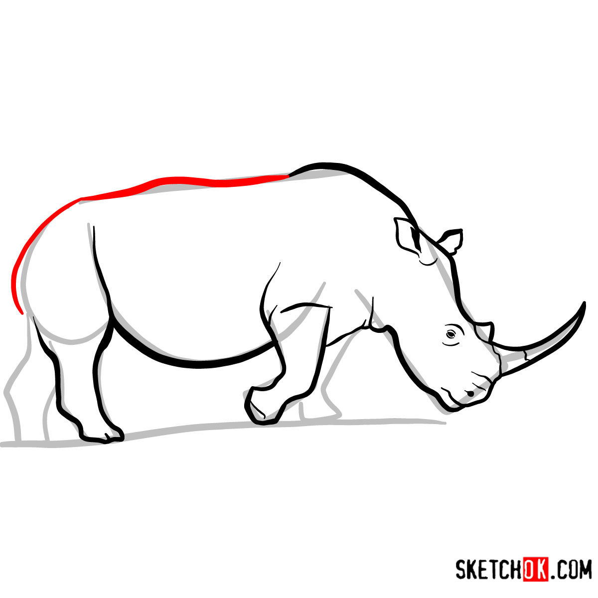 How to draw a Rhinoceros | Wild Animals - step 08